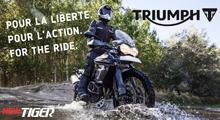 Triumph New Tiger 800