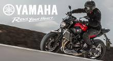 Yamaha Modellepalette